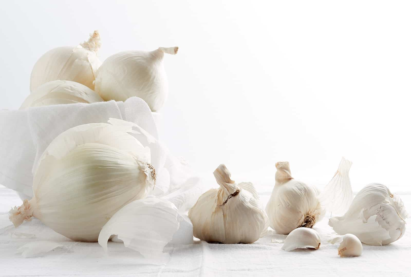 Onions and Garlic on a white background.